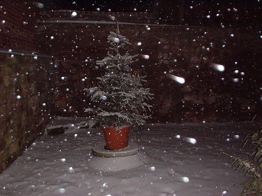 Schneeflocken in der Nacht