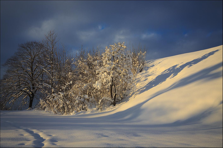 Schneegelbe Abendsonne
