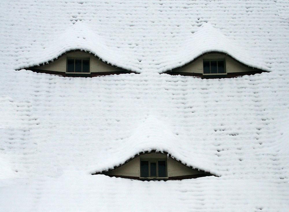 Schneegesicht