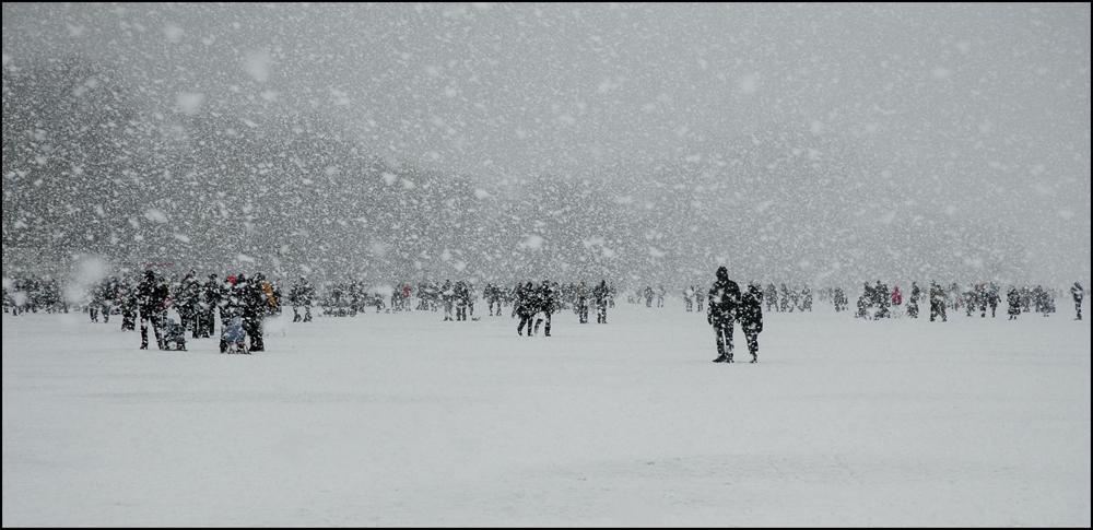 Schneegestöber auf der Alster