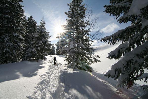 Schneehschuhtour