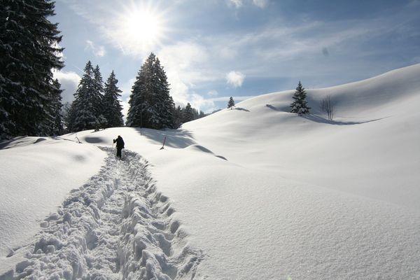 Schneehschuhtour II