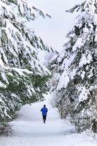 Schneejogger