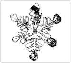 Schneekristall 1