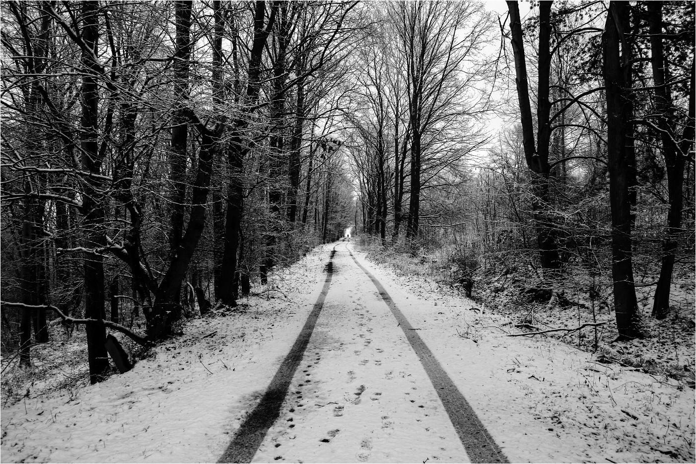 Schneeland (2)