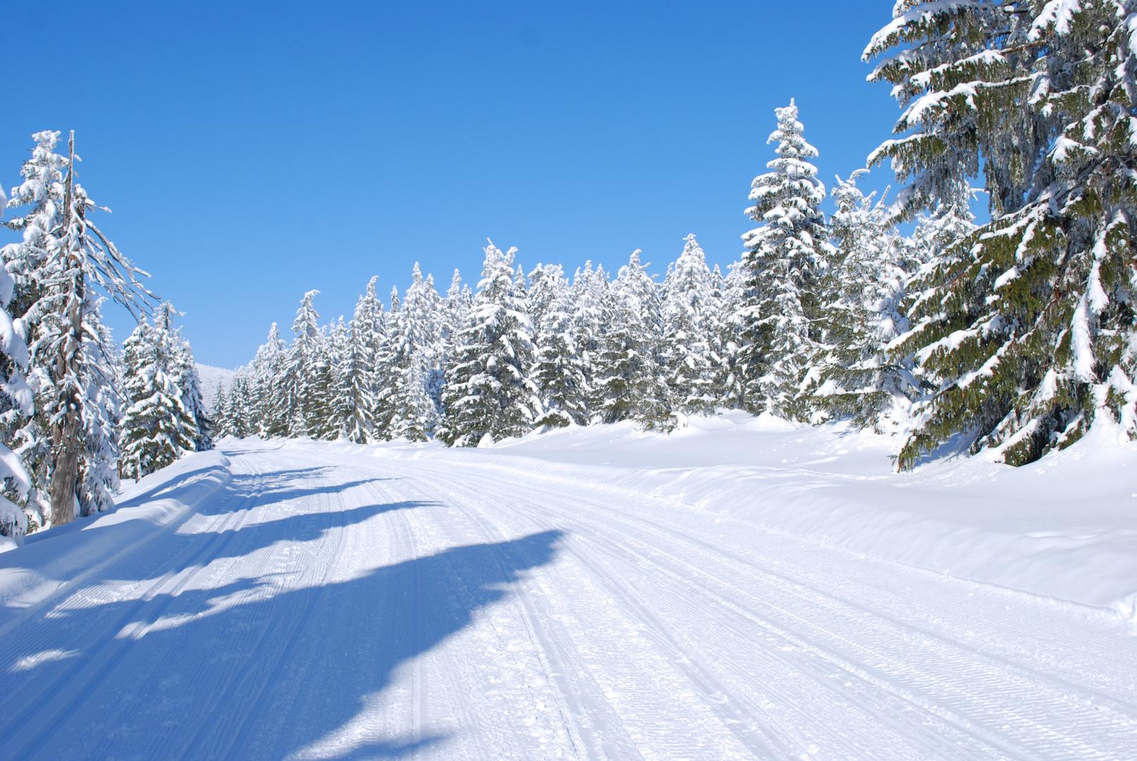 Schneelandschaft 1