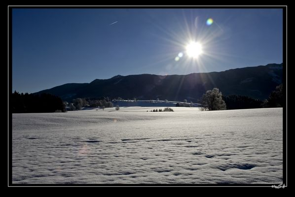 [ Schneelandschaft ]