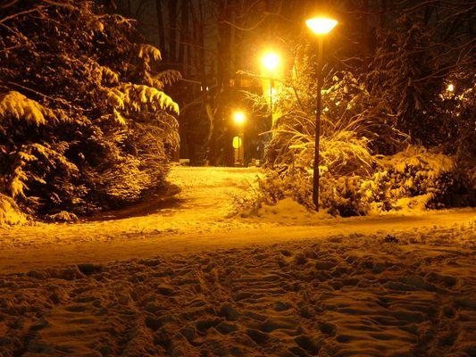 Schneelandschaft bei Nacht