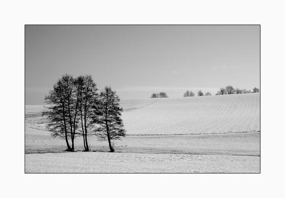Schneelandschaft.