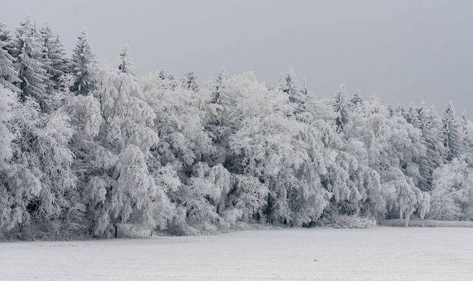 Schneelandschaft Erzgebirge