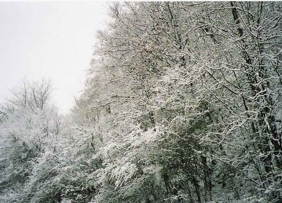 Schneelandschaft im Stau