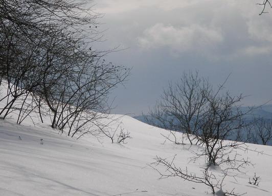 Schneelandschaft um Weihnachten