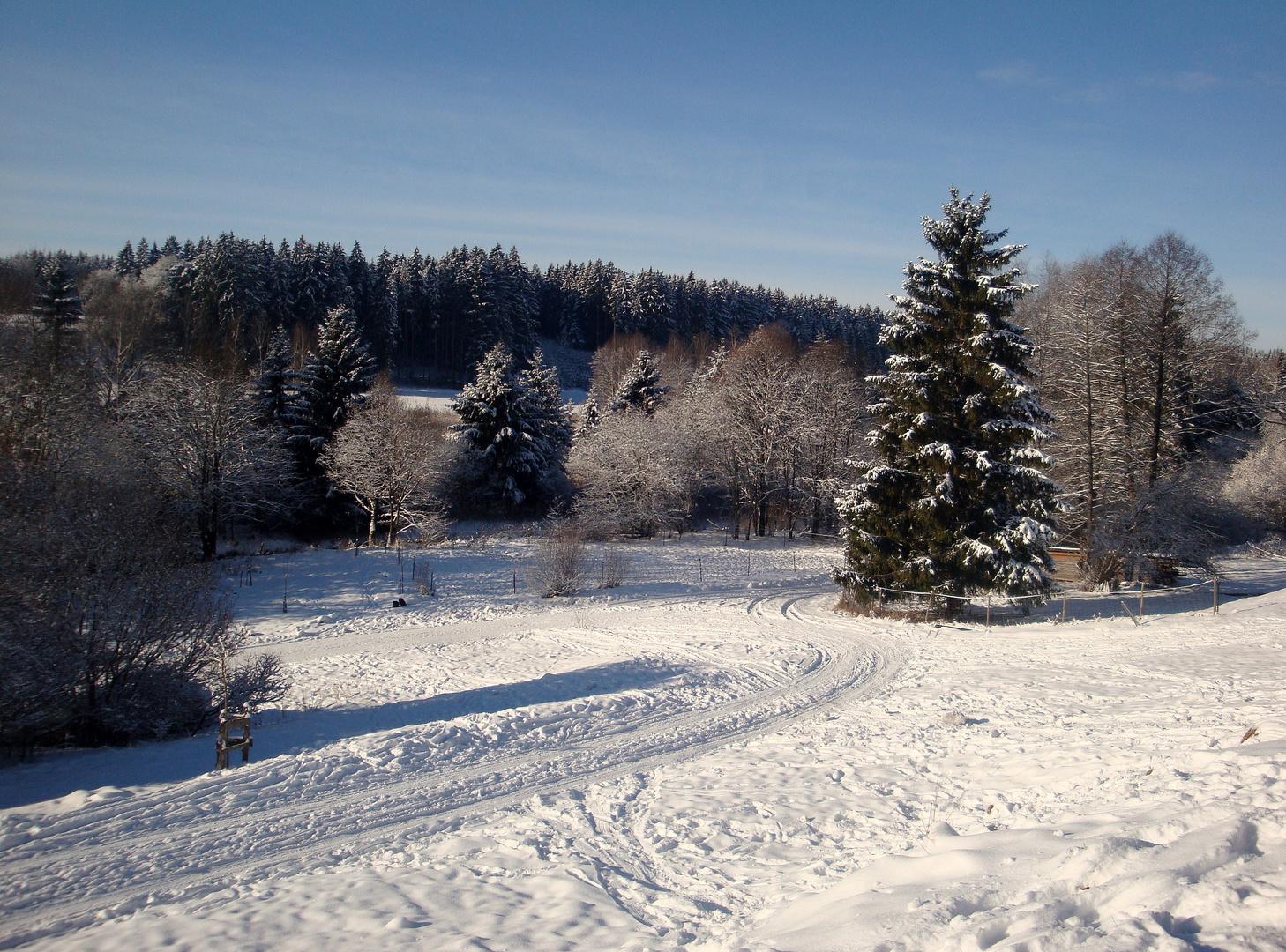 - Schneelandschaft von Etting aus - Richtung SW - bei Sonnenschein - vom 27.12.2o1o -