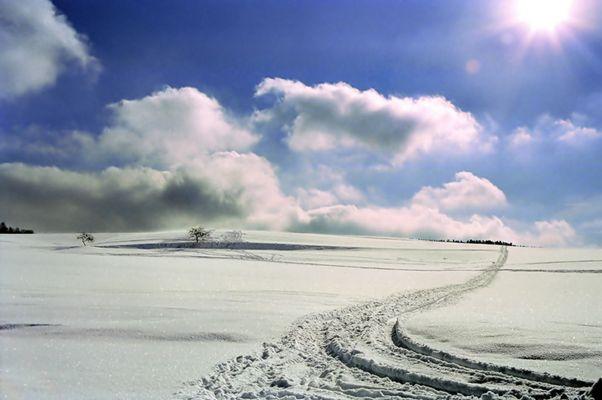 Schneelandschaft vor dem Reload!