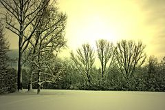 Schneelandschaft4