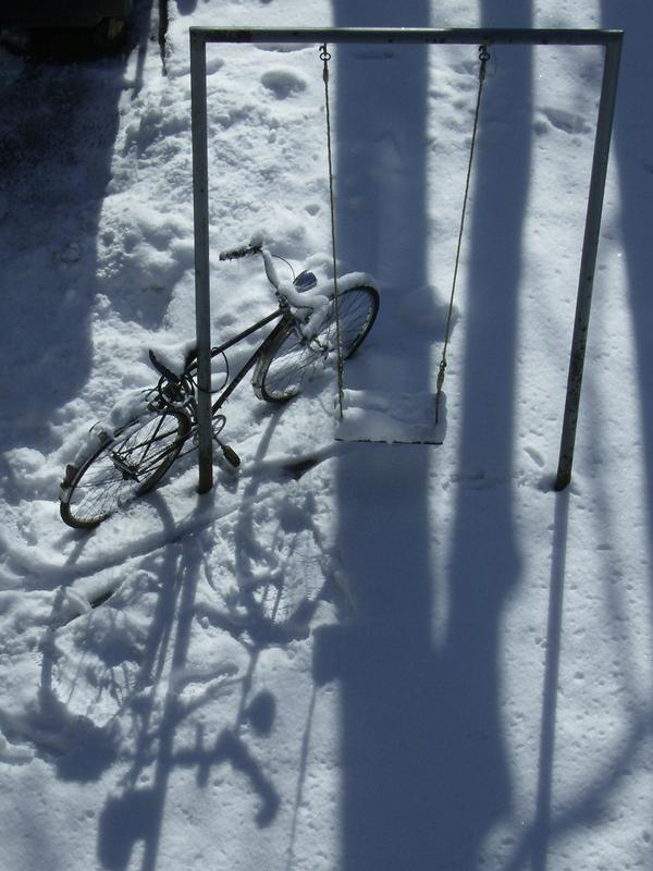 Schneeleben