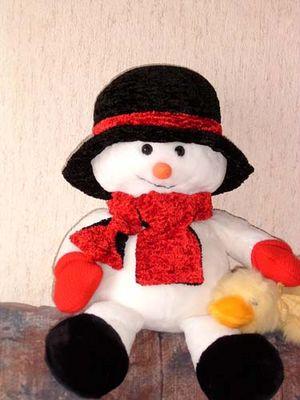 Schneemann mit Ente..:-)
