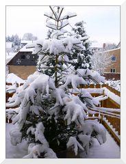 Schneemassen ohne Ende...