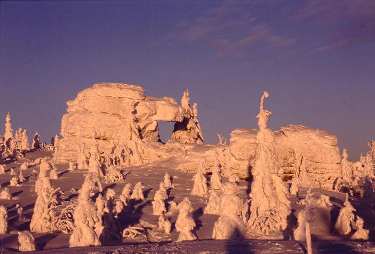 Schneepanzer