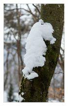 <S(chn)eepferdchen im Winterwald>