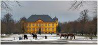 Schneepferde ... von Gunter Redlin