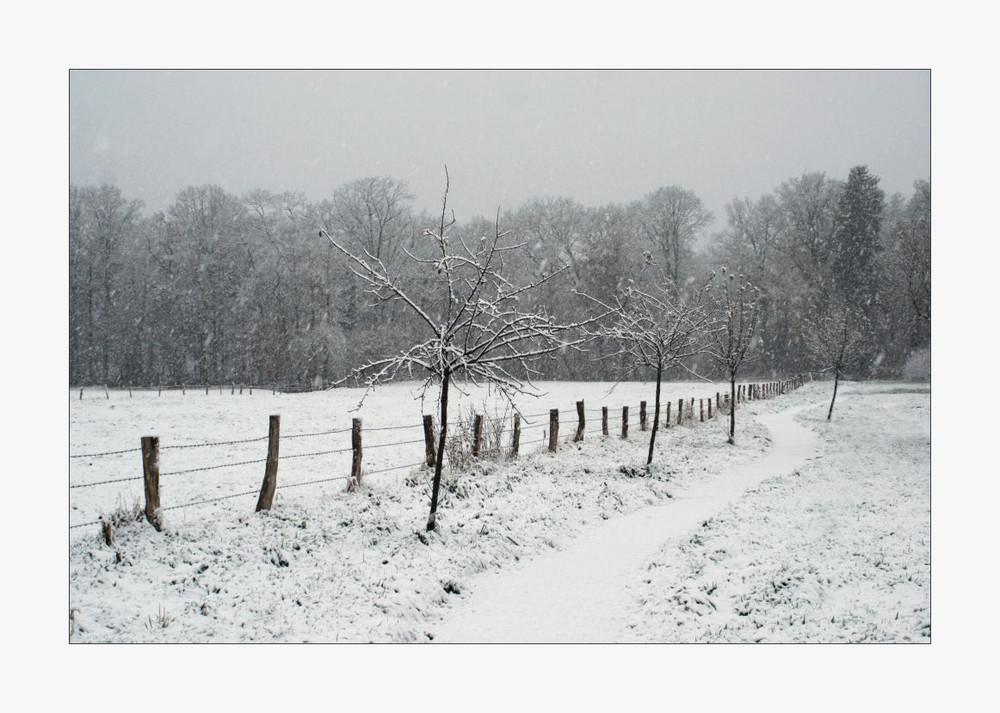 Schneerauschen