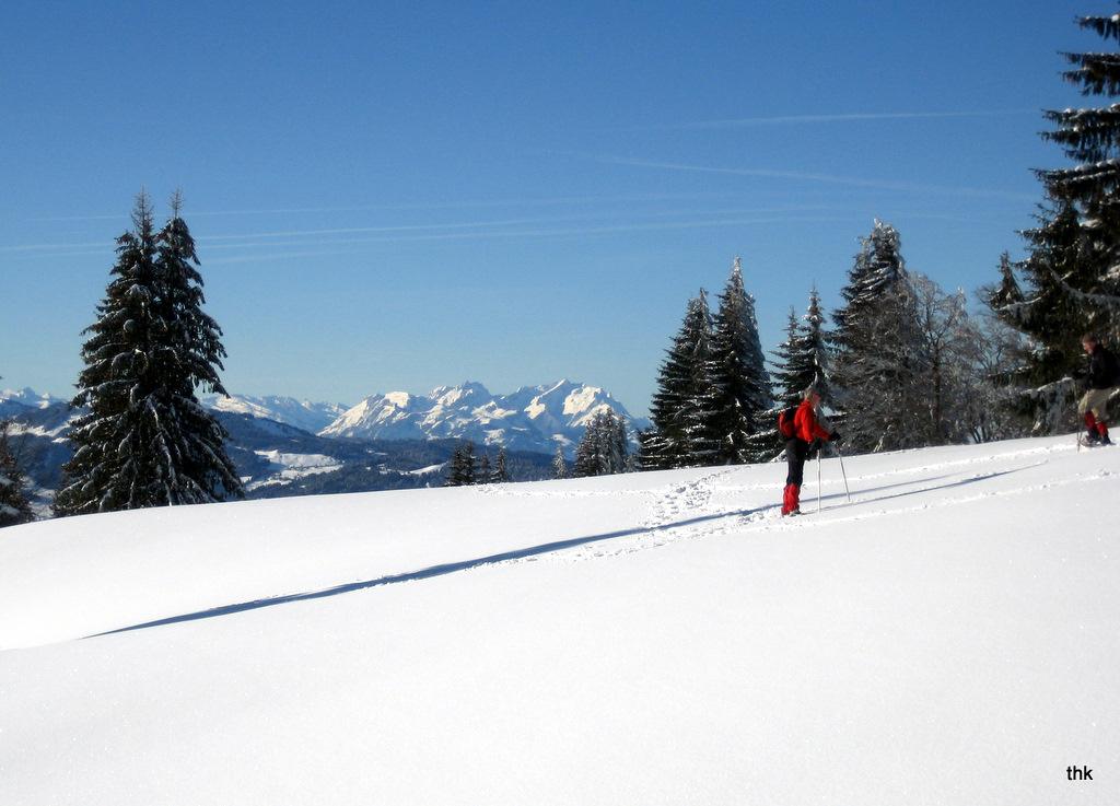 Schneeschuhwandern auf dem Hochhädrich