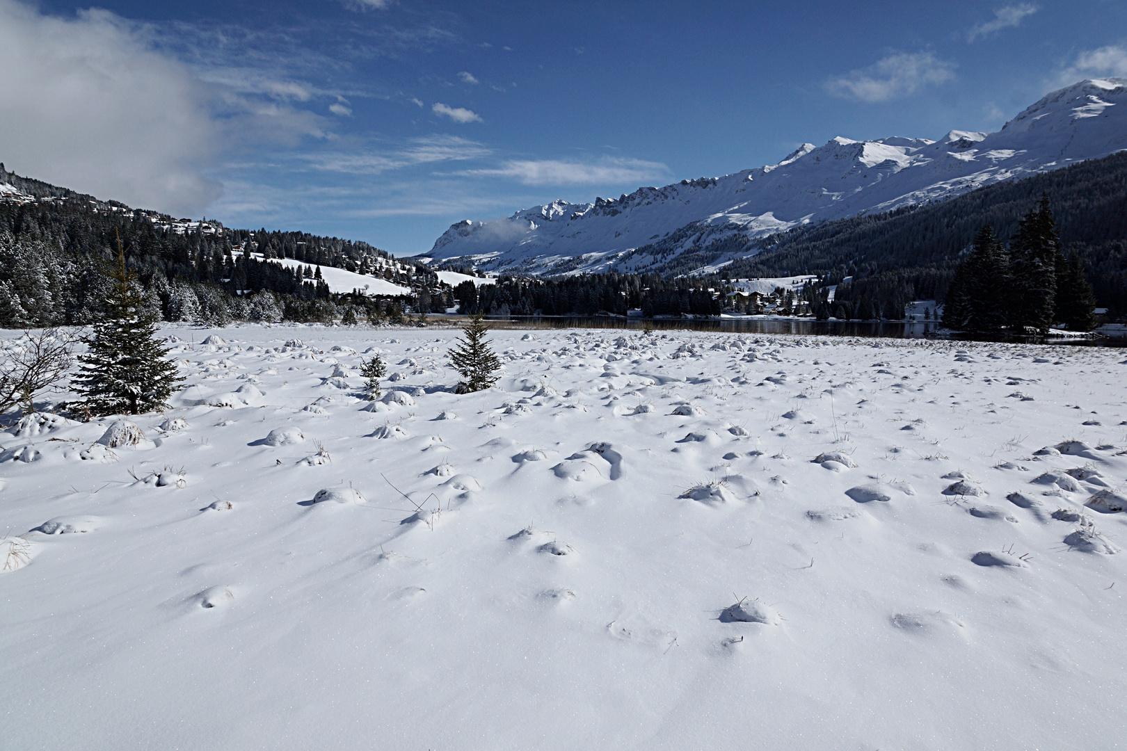 """""""Schneeseesichten"""""""