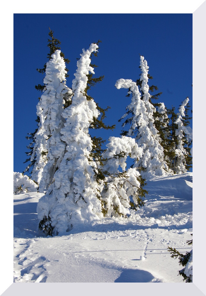 Schneeskulpturen 1
