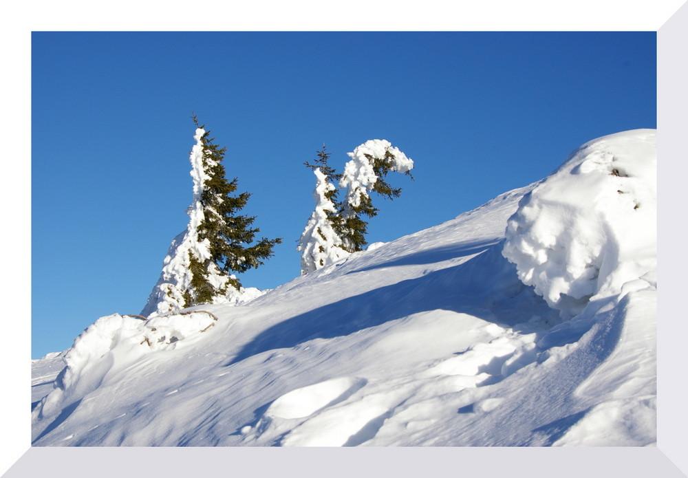 Schneeskulpturen 3