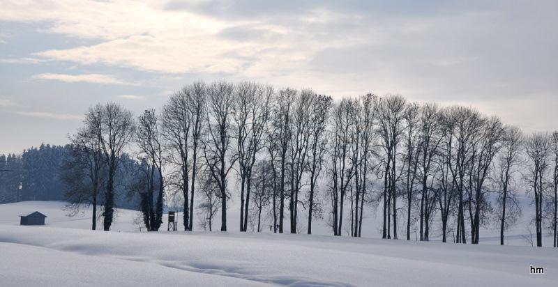 Schneespaziergang am 2. Feiertag