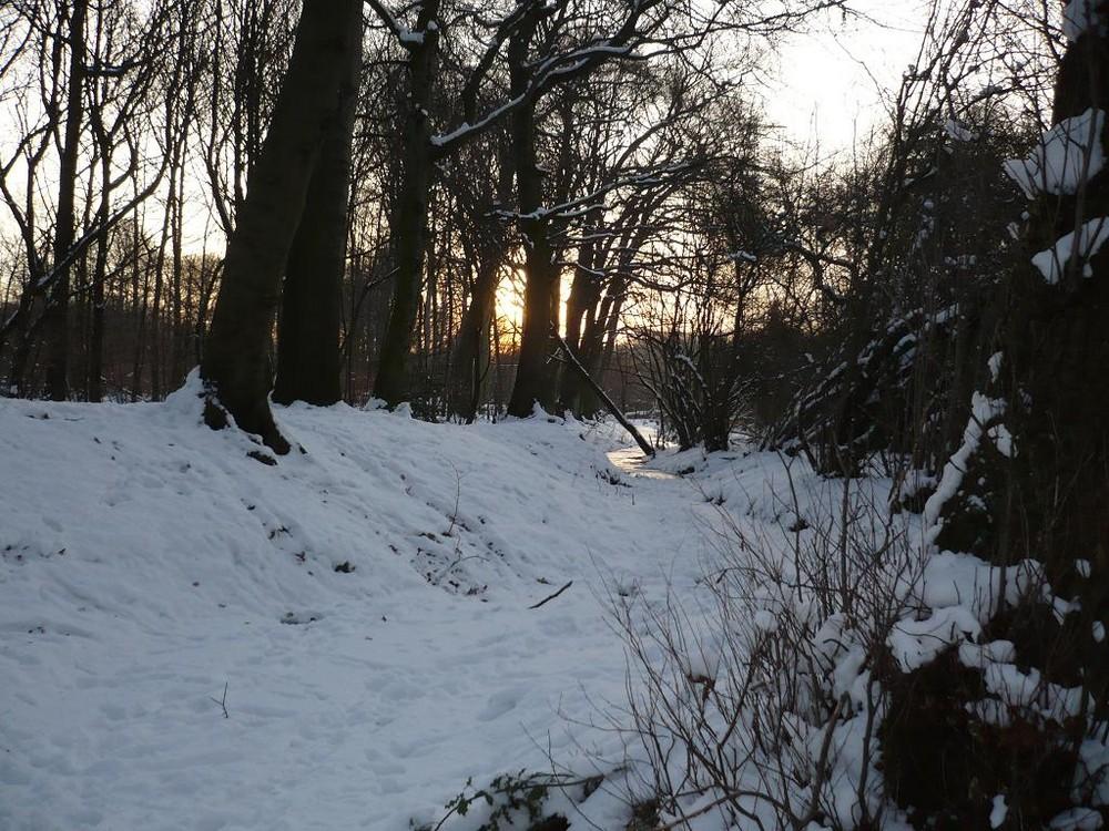 Schneespaziergang...