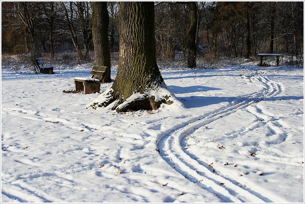 Schneespuren (Winterimpressionen 3)