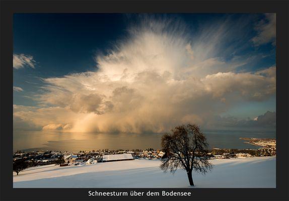 Schneesturm über dem Bodensee