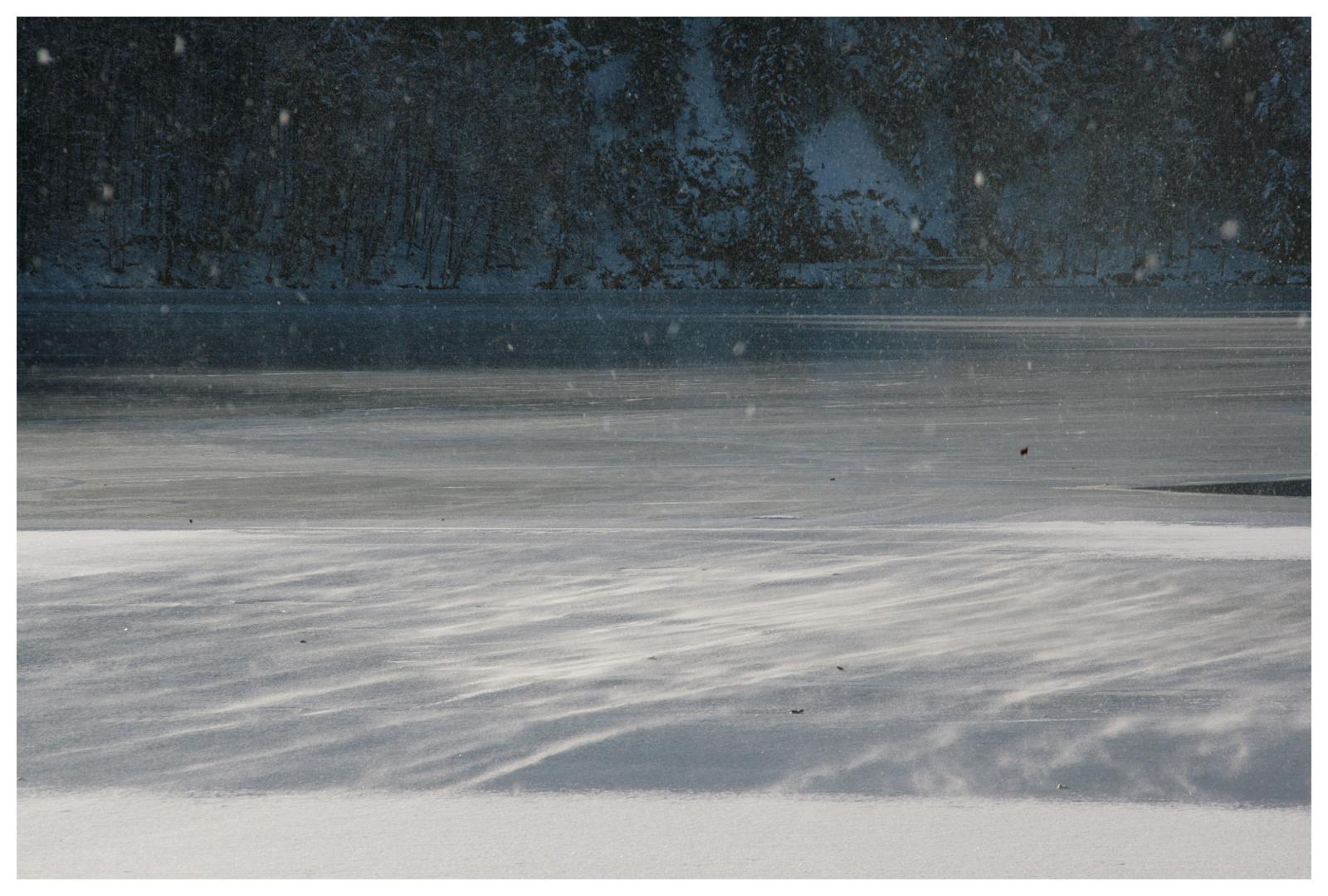 Schneesturm über dem Hechtsee