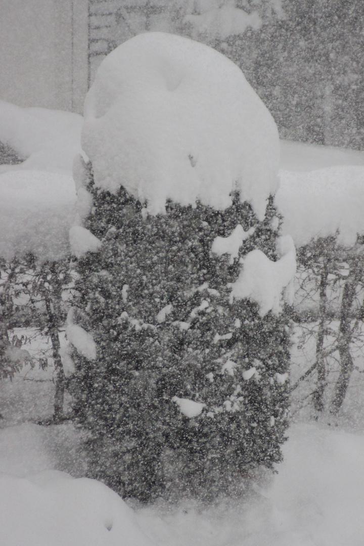 Schneesturm1