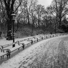 schneetag