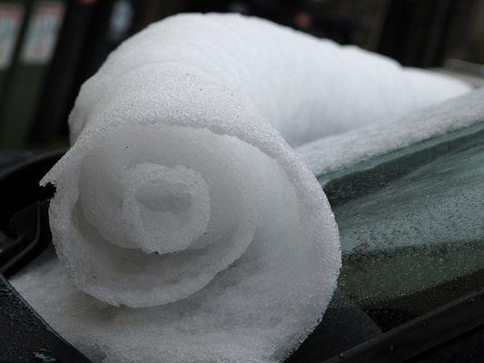 Schneeteppich