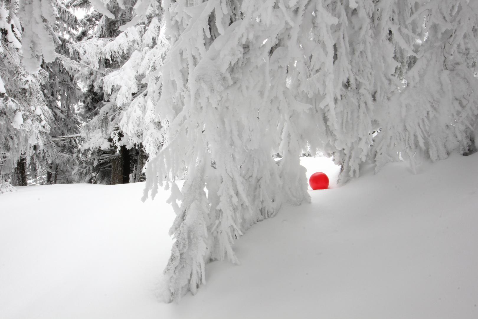 Schneevorhang