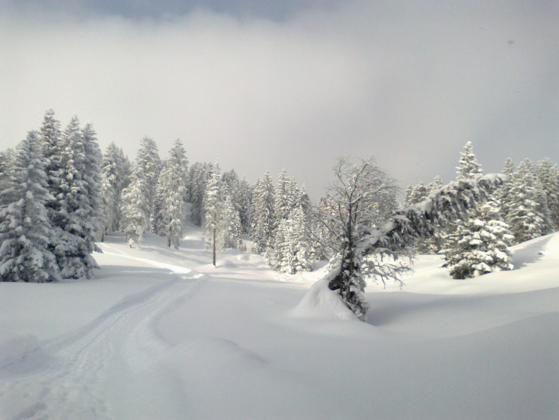 Schneewanderung1