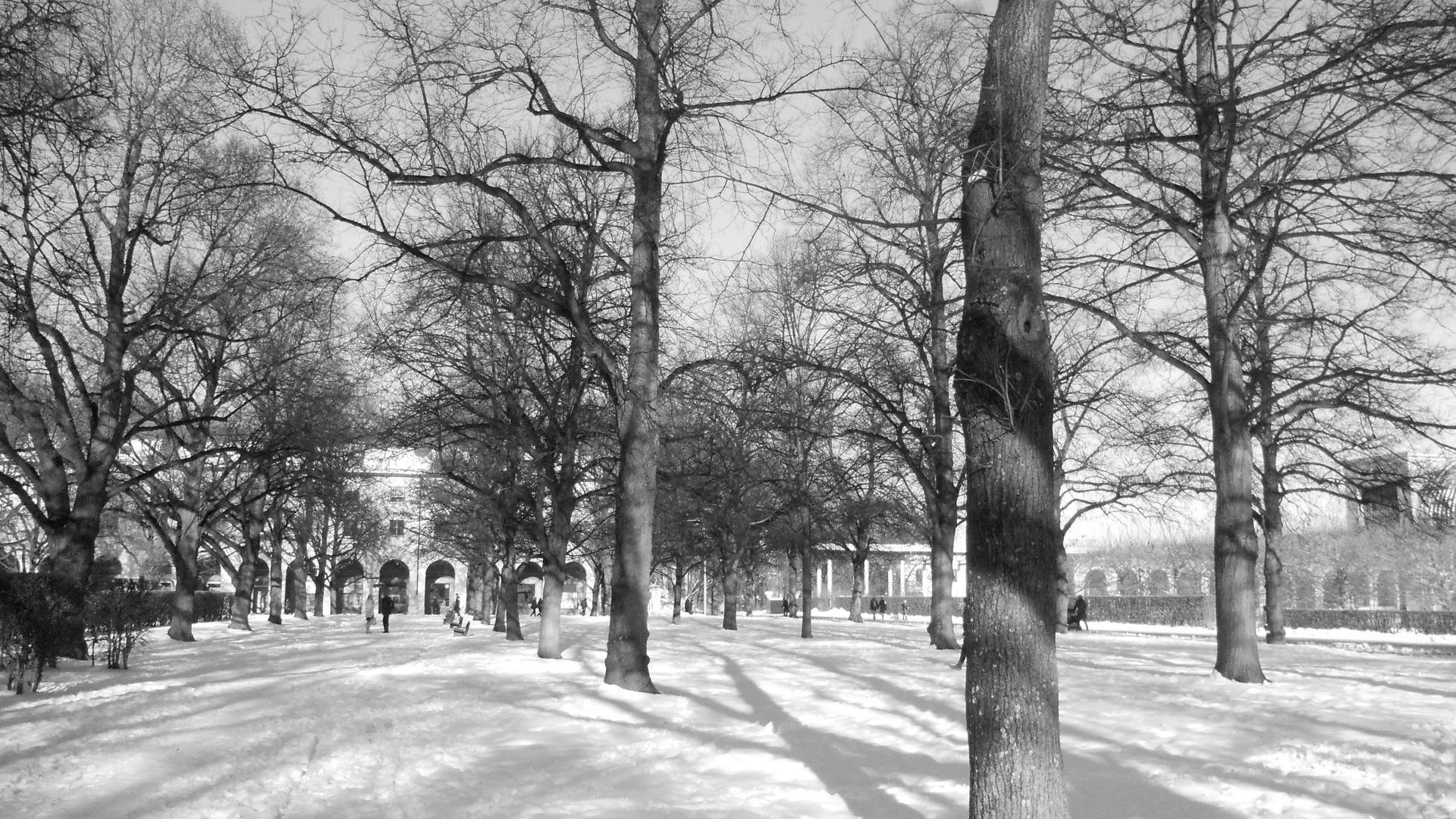 Schneewinter im Januar
