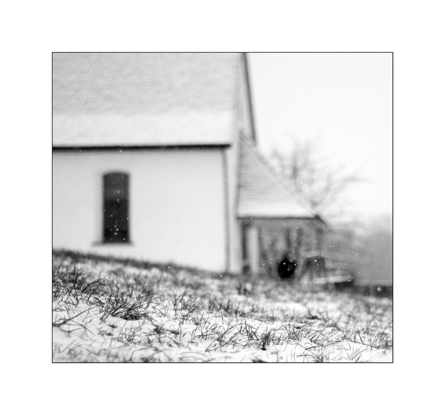 schneitwieder