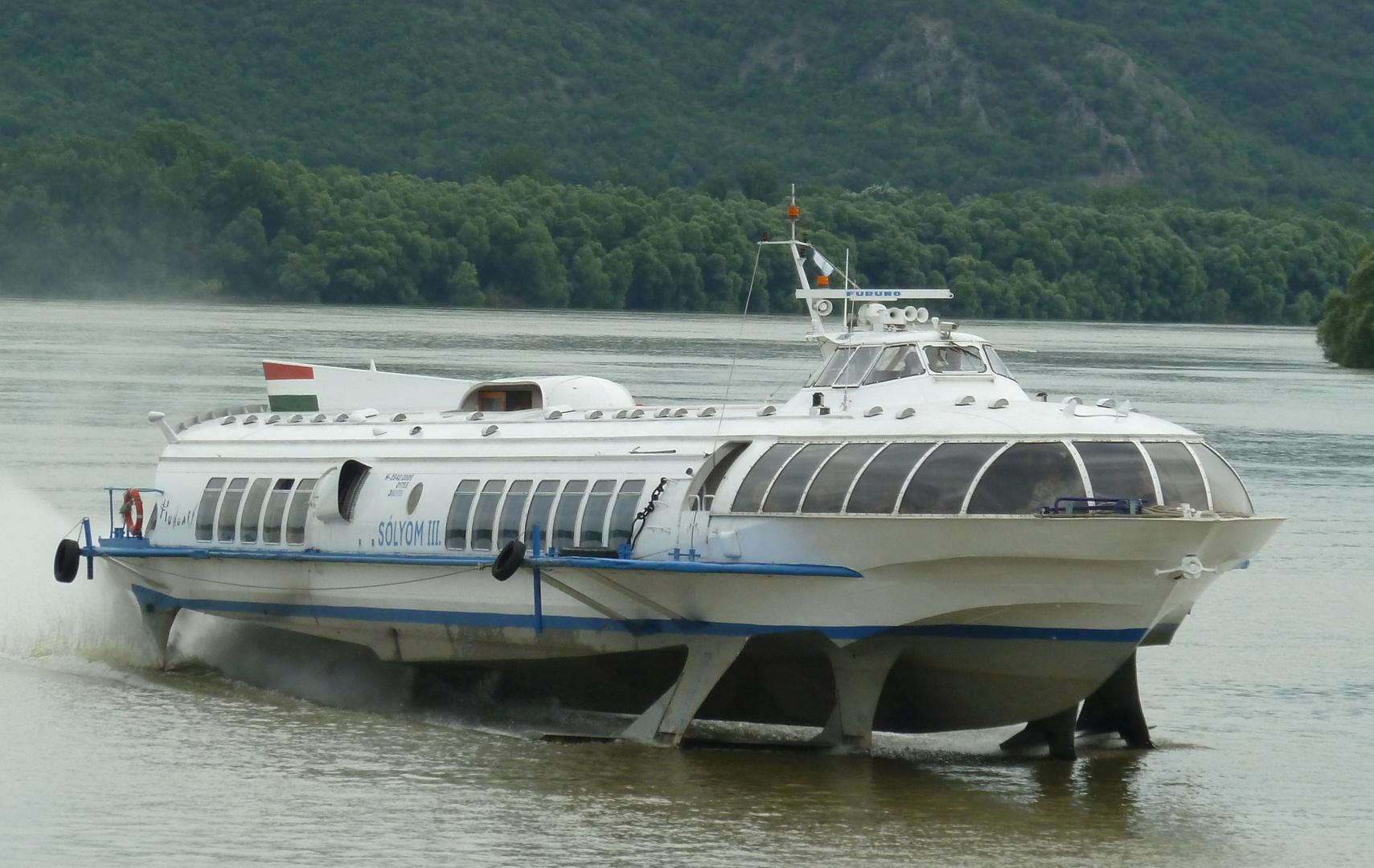 Schnellboot auf der Donau