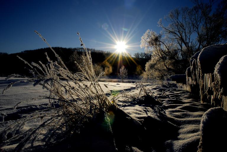 schön kalter wintermorgen