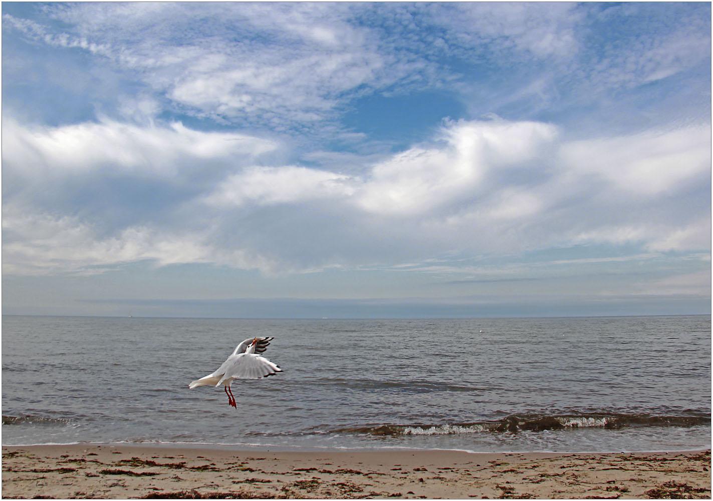 Schön war´s am Meer ...