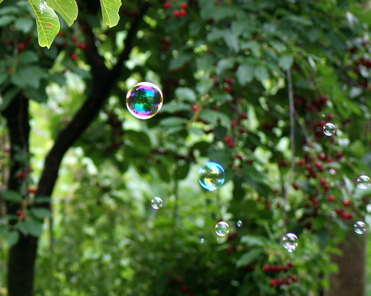 schöne Beschäftigung - Seifenblasen