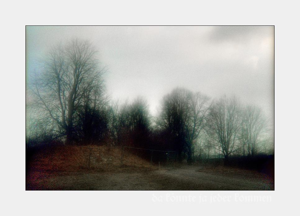 Schöne Bilder (I): Winterliche Bäume hinter Bauzaun