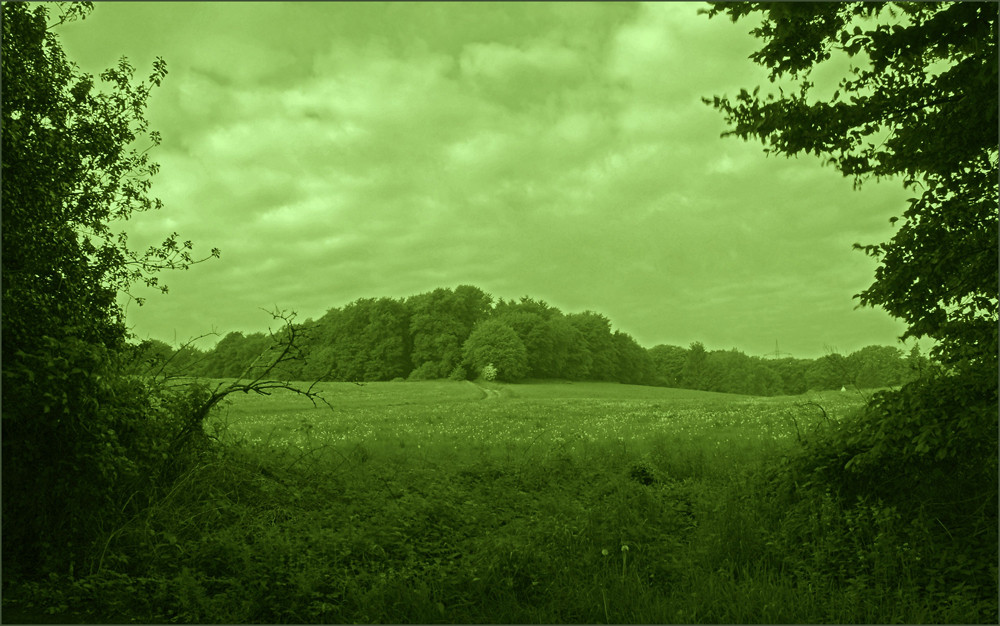 ......schöne landschaft II............