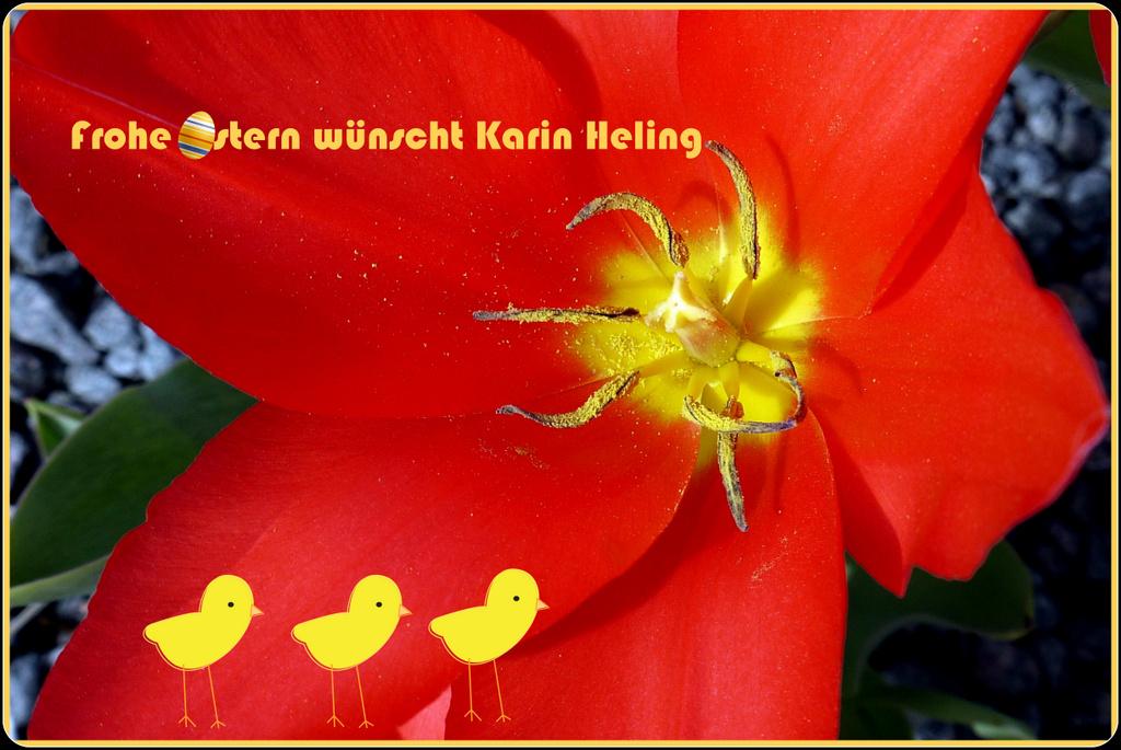 Schöne Osterfeiertage...