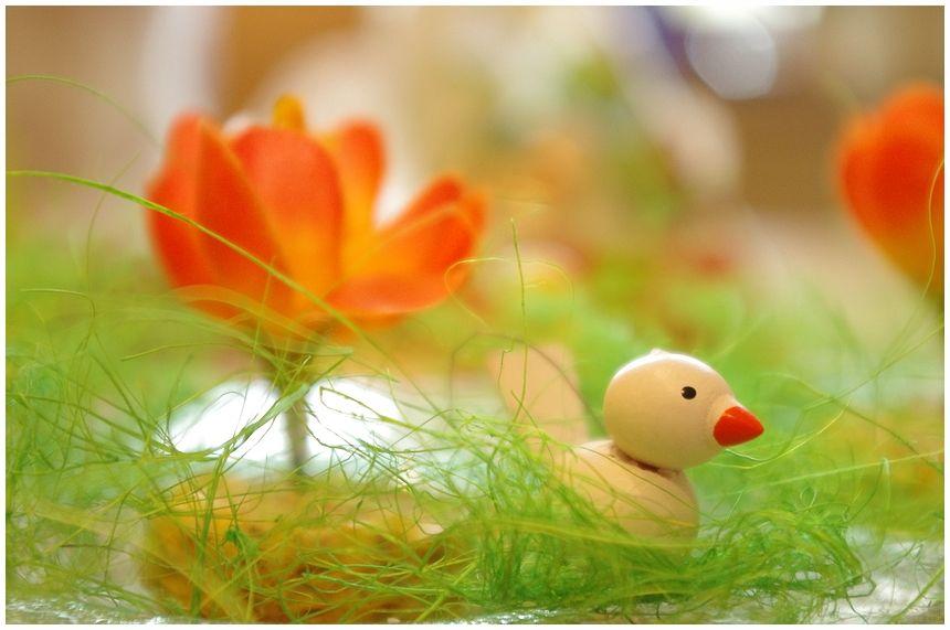 Schöne Ostern..